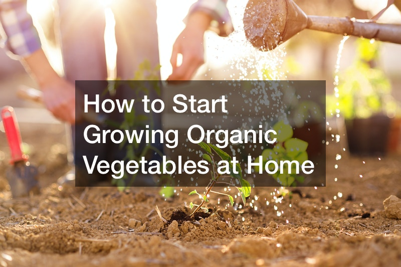 how to start growing organic vegetables at home